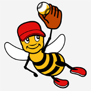 beeball_bee